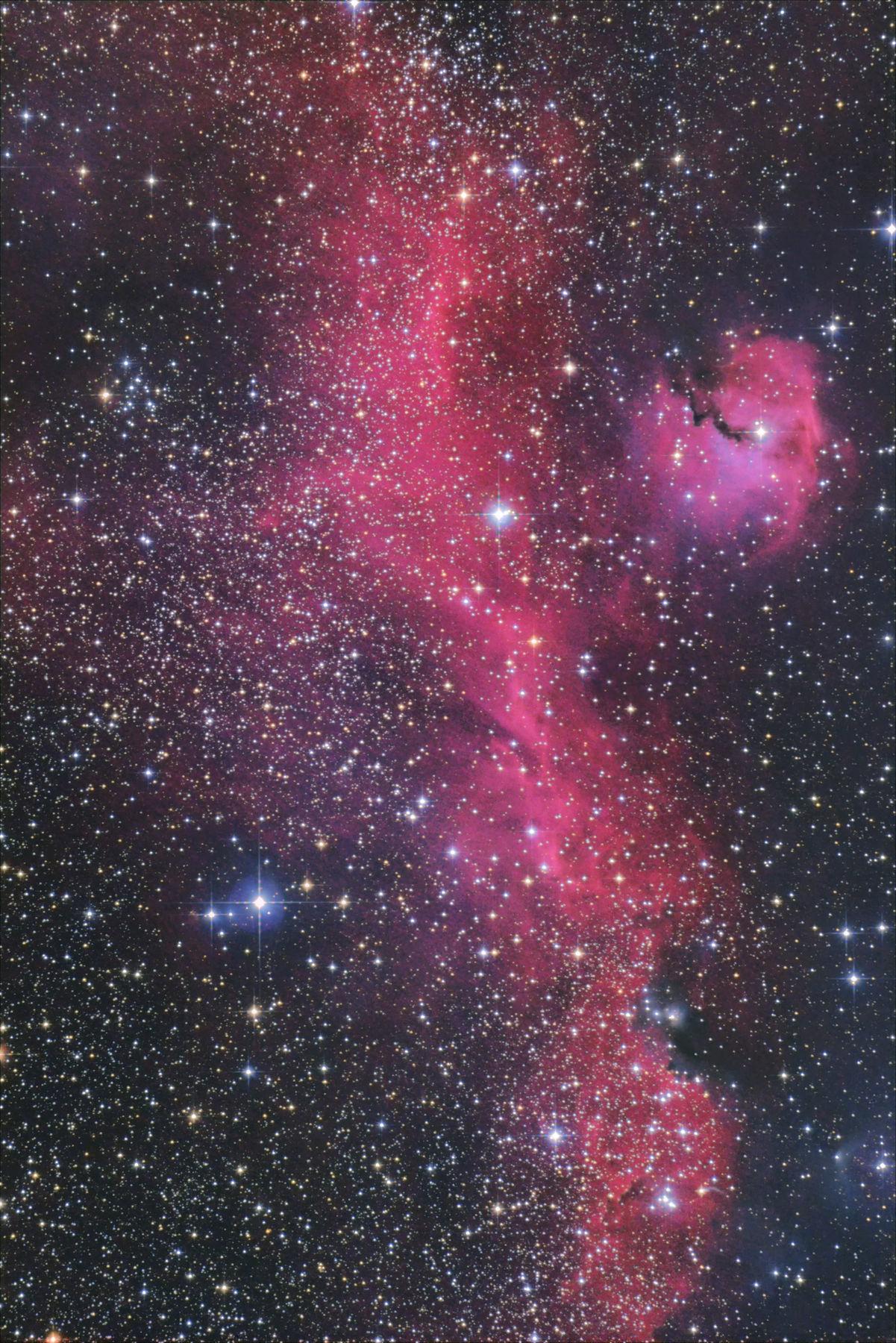 【星雲】IC2177 かもめ星雲