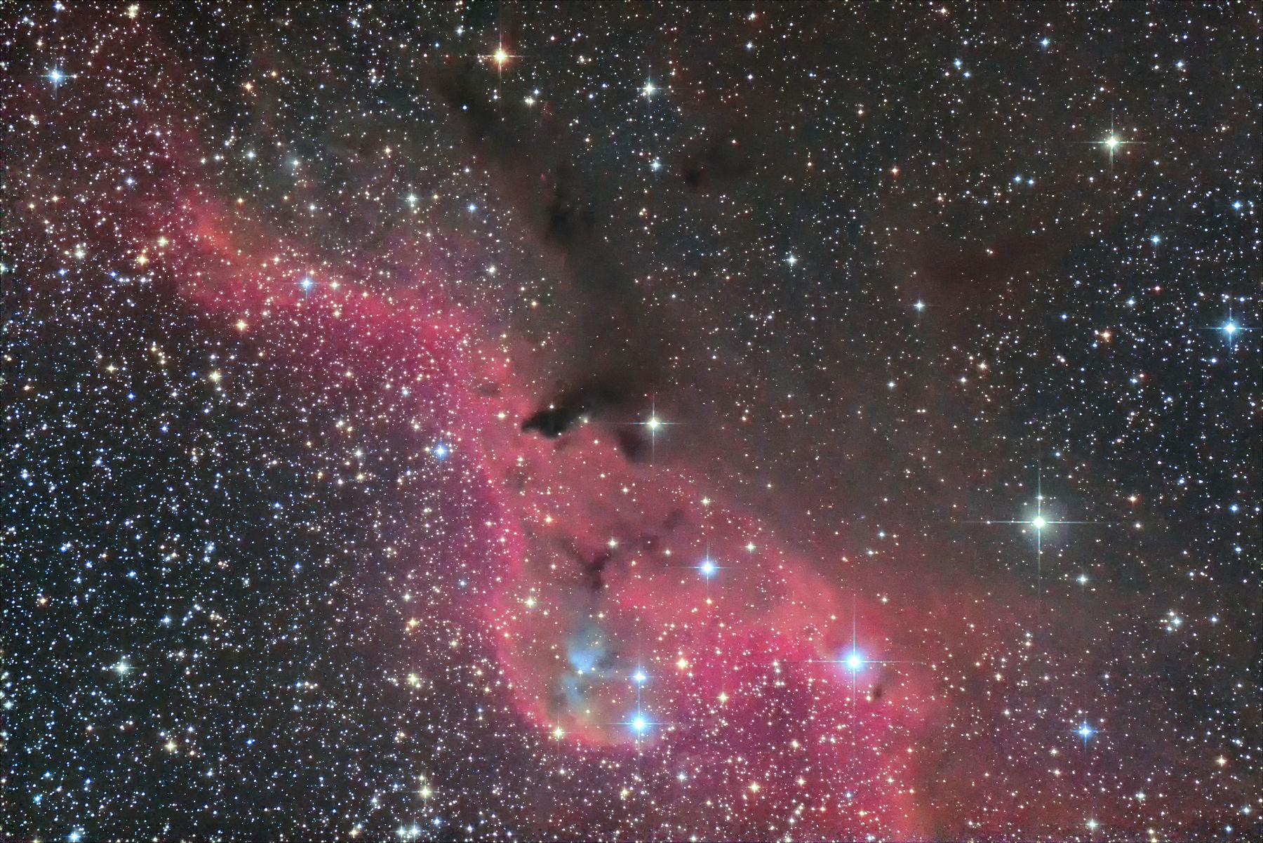 【星雲】Sh2-264 エンゼルフィッシュ・・の背びれ(。-∀-。)