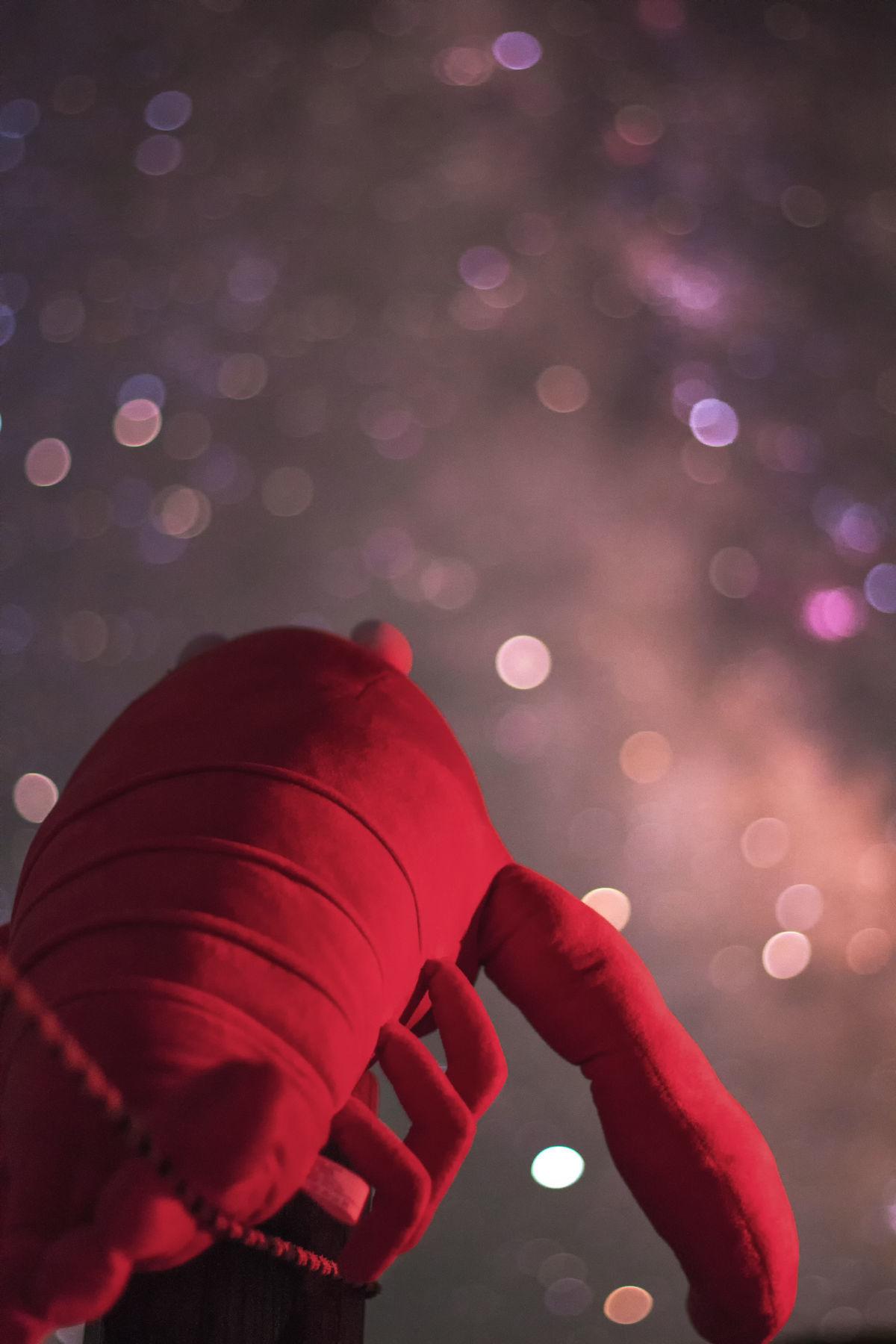 【星景】 「ザリガニ、天体写真に目覚める」 の巻(ヘ´∀`)ヘ