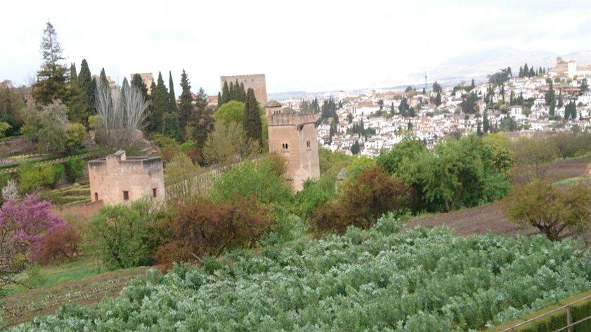 アルハンブラ宮殿と白い家の町並み