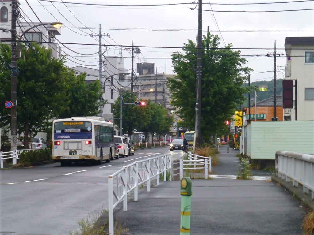 P1020017.jpg