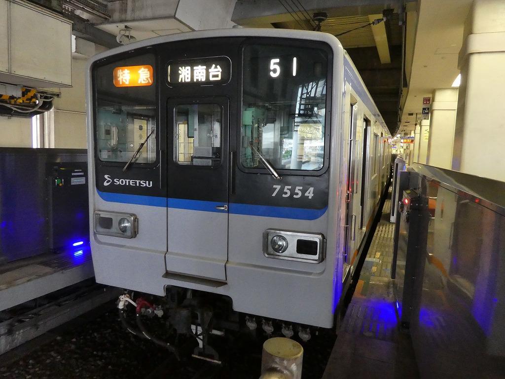 P1160644.jpg