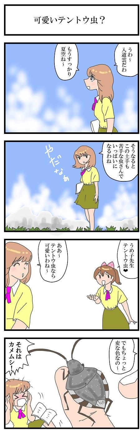 かわいいテントウムシ.