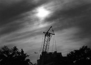 190515_crane_01bw.jpg
