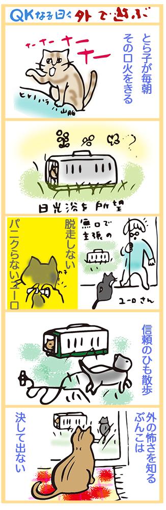 qk manga12