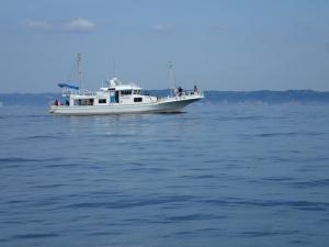 P5110017 有名船