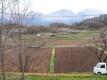 パン屋からの景色
