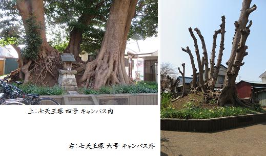 b0327-2 七天王塚②