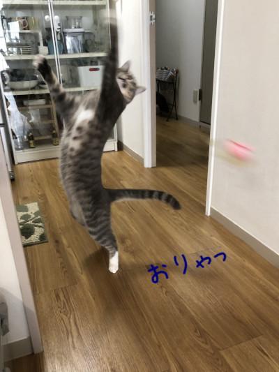 平成はお世話になりました!