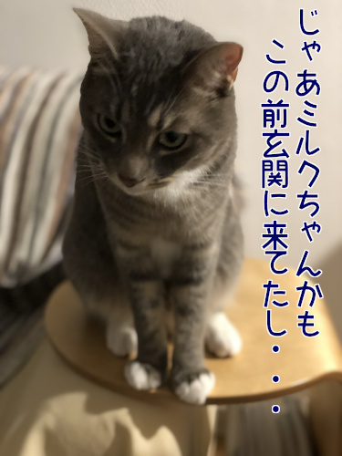 haburashi6.jpg