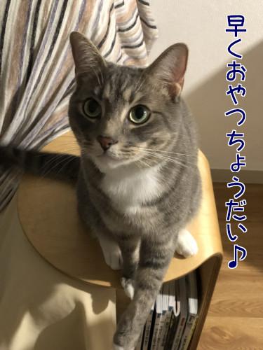 haburashi9.jpg