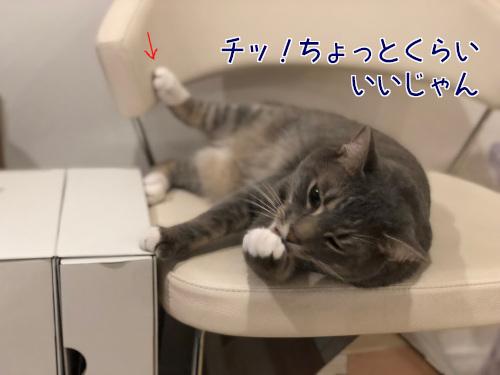 mikey_5.jpg