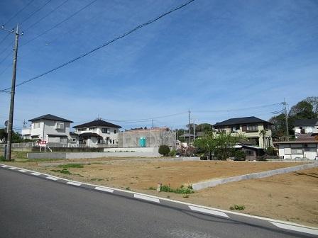 大角豆348-1