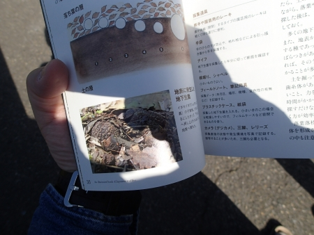P5048689.jpg