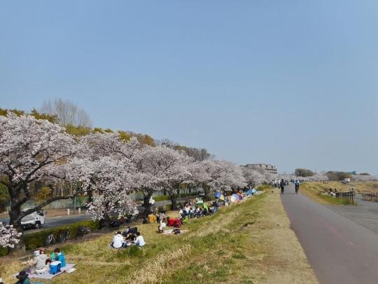 19_04_07-16wada.jpg