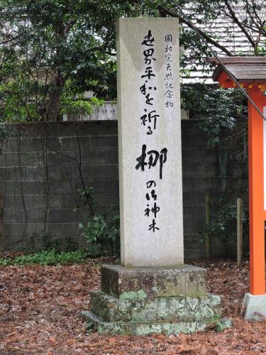 190411hayatama39.jpg