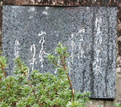 190411hayatama48.jpg