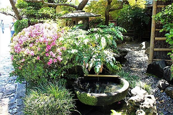 ⑨蓬莱軒庭