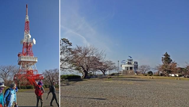 5湘南平山頂と鉄塔
