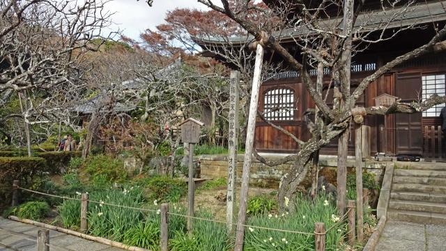 25瑞泉寺3