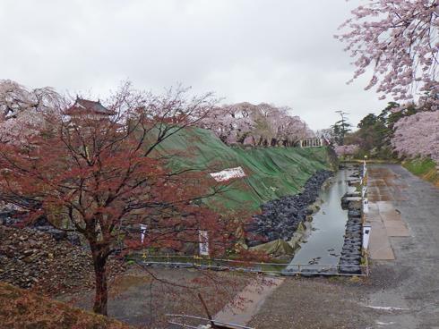 弘前城桜まつり2019-15