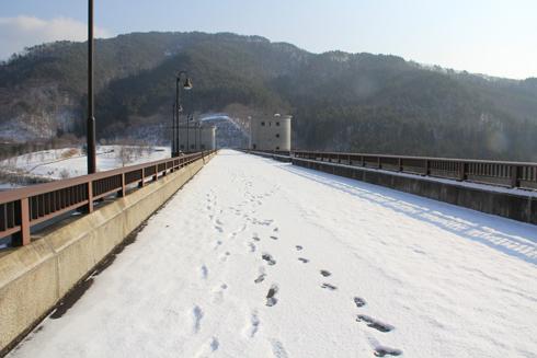 早池峰ダム2019-5