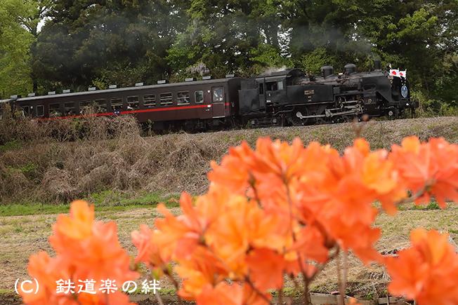 20190501折本011DX2