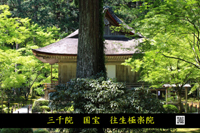 gokurakuin.jpg