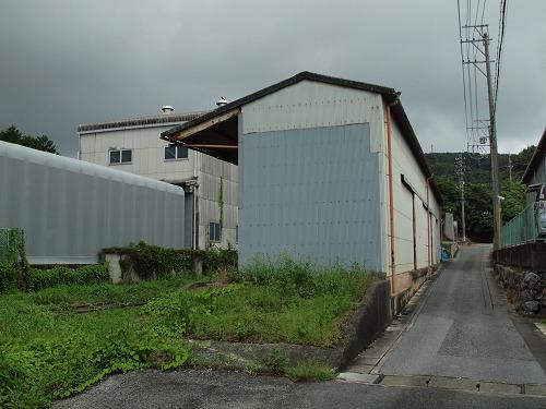 P1016855.jpg