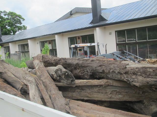 埋れ木運搬 003