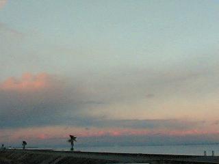 津の海(*´∀`*)
