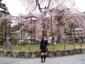 嵐山川沿いの桜