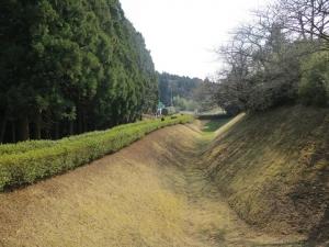 山中城/01三ノ丸堀.jpg