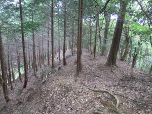 後瀬山城/19北西尾根へ.jpg
