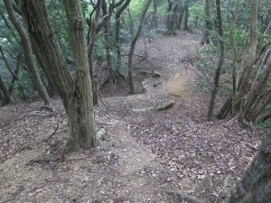 後瀬山城/22八幡神社へ土橋.jpg