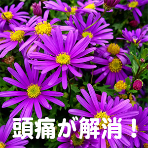 頭痛,花粉症,奈良,滋賀,兵庫
