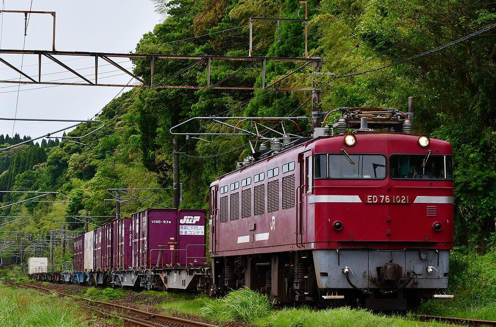 DSC_0607bctsf.jpg