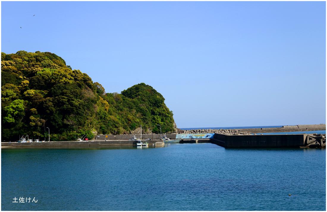 横浪黒潮ライン2