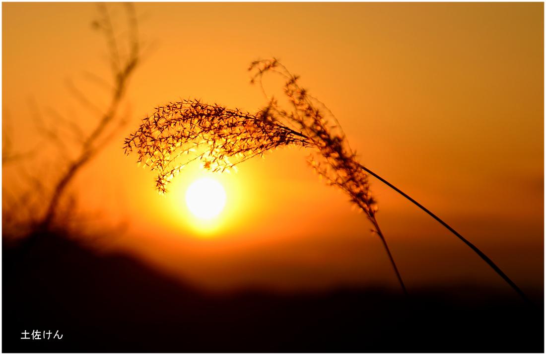 五台山からの夕景2