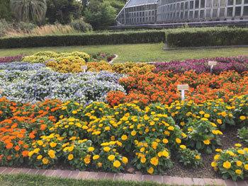 190502 京都植物園