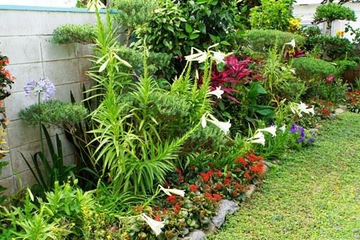 庭園-d DSC08402
