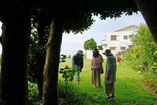 庭園-h DSC08434