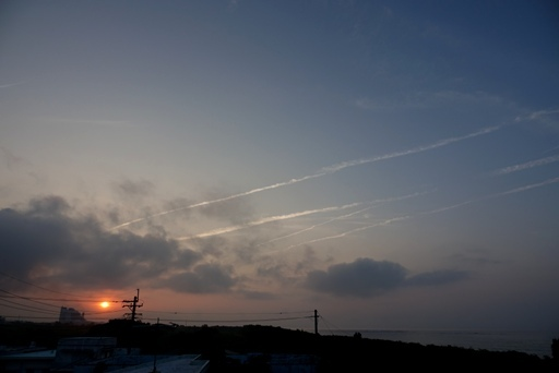梅雨の朝c DSC05727