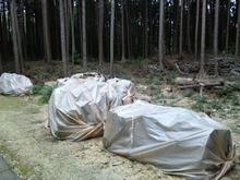 おがのおーがにっくらいふ-薫蒸の現場@稲荷山