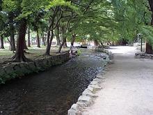 おがのおーがにっくらいふ(★´ひ`★)ゞ-上賀茂神社2
