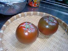 おがのおーがにっくらいふ(★´ひ`★)ゞ-KAGOME 黒トマト織部2