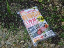 おがのおーがにっくらいふ(★´ひ`★)ゞ-4 12.06.15 伏見とうがらしの収穫