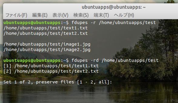 Ubuntu 18.04 重複ファイル 検索 fdupes 削除