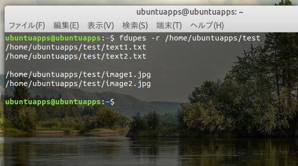 Ubuntu 18.04 重複ファイル 検索 fdupes コマンド