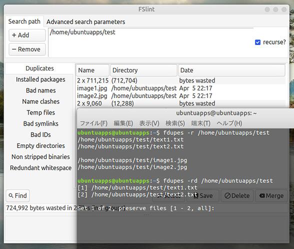 Ubuntu 18.04 重複ファイル 検索